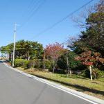 敷地の向かいは日和山公園になります。