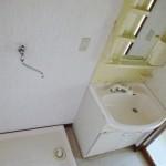 シャワー付き洗面台/洗濯機置き場