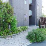 植栽がきれいな建物周り