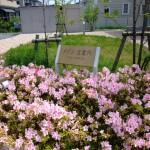 敷地内にミニ庭園がございます。(外観)